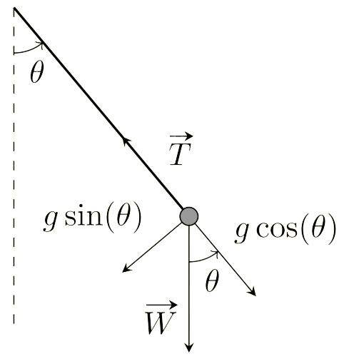 The physical model for an ideal pendulum.